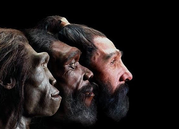 the evolution of modern us society Evolution is an increase in maturation and complexity, and does not have to necessarily follow the path of darwinian evolution, which is modification by descent - nature introduces small.